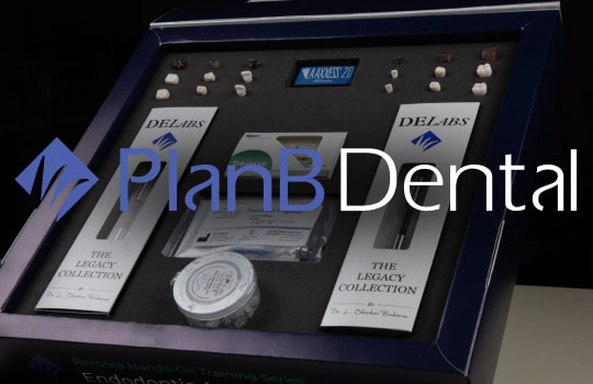 PlanB: Designing an online academy and e-commerce website for a global store of endodontic products